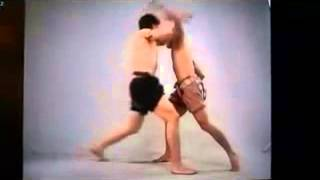 1 Số kỹ thuật đối kháng trong Muay Thai......