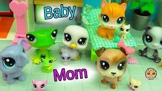 New Littlest Pet Shop Mom & Newborn Baby Sets - Mommies + Babies at Hospital