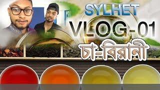 চা বিরানী || VLOG1 || Sylheti vlog | সিলেটের চা বিরানী | বনলতা পেস্ট্রি | Vlogi with Frinds