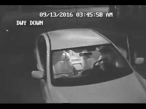 Who is this?? Silver St / Wilson St Car Break in & Theft