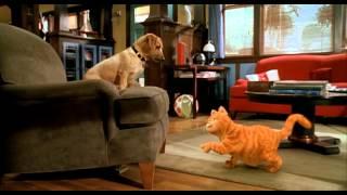 GARFIELD - IL FILM: Garfield vs Odie