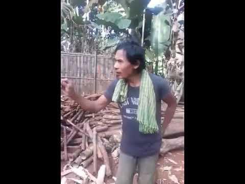 Xxx Mp4 Karbi Video Funny 3gp Sex