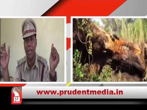 Xxx Mp4 Prudent Media Konkani News 02 April 18 Part 3 3gp Sex