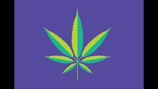 गांजा (WEED) का 7 बुरा असर लोगो में  |  impact of  marijuana (weed) | LEARNERBOY