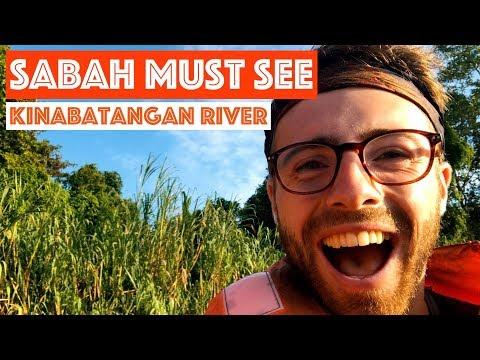 SABAH MUST SEE KINABATANGAN RIVER TRAVEL MALAYSIA