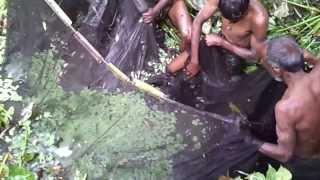 Fishing In Bangladesh Biswanath