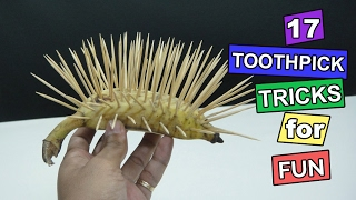 17 Easy Toothpick Tricks - How to use toothpick for fun