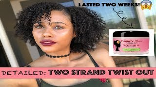 One Product Twist- Out | Camile Rose Naturals Aloe Whipped Butter Gel Review