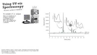Practical Uses of UV-vis Spectroscopy