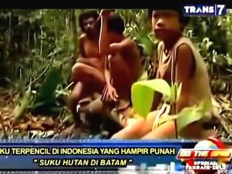 7 Suku Terpencil Di Indonesia Yang Hampir Punah