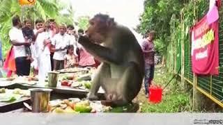 ഓണസദ്യ   Amrita News