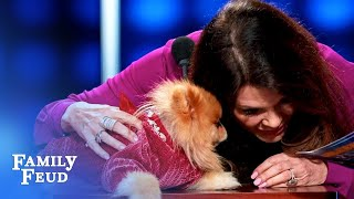 My DOG wants to be BURIED WITH... WAIT, WHAT?   Celebrity Family Feud