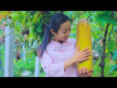 第1次用这么大的黄瓜来做腌黄瓜 简单腌制就可以保存很久,味道 100� 吃 吃起来嘎嘣脆 ,顺便还摘了几个� �手瓜来炖排骨Chinese Food【野小妹wild girl】