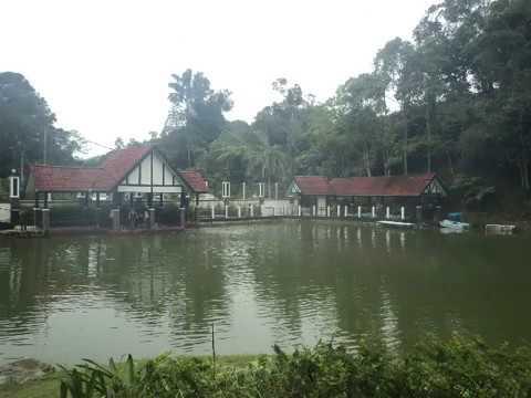 Fraser's Hill,Pahang,Malaysia/大马彭亨州福隆港(2017)