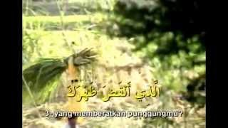 Surah Alam Nasyrah - Sheikh Mishary Rashid Al Afasy