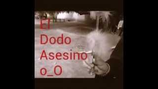 EL DODO ASESINO