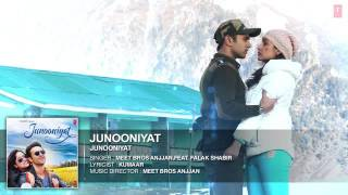 Junooniyat Title Song By Falak Shabir - Pulkit Samrat, Yami Gautam T-Series