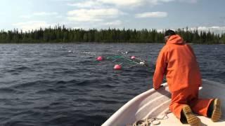 Med Johnny och Kenneth Stålarm på laxfiske i Luleå skärgård
