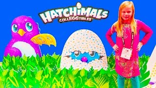 HATCHIMALS Assistant Finds New CollectEggiblle Hatchimals In Real Life Video