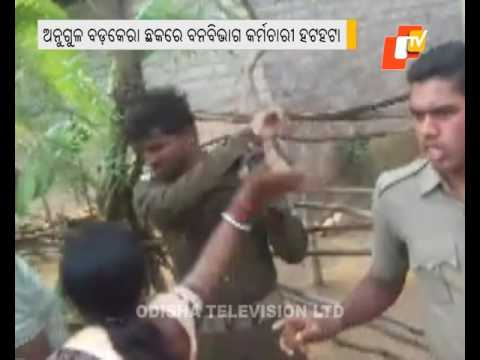 Xxx Mp4 Forest Staff Attacked In Angul 3gp Sex