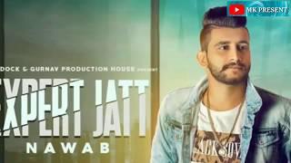 New WhatsApp status Video 2018       Expert Jatt    Panjabi Song Ringtone
