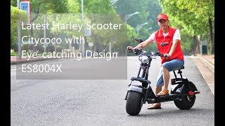 2018 Citycoco Harley Electric Scooter with Brushless Motor ES8004X