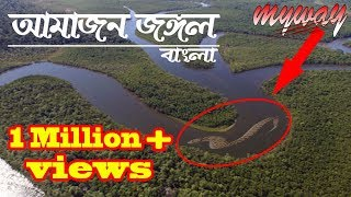 Amazon Jungle || The Amazon Rainforest  || Bengali