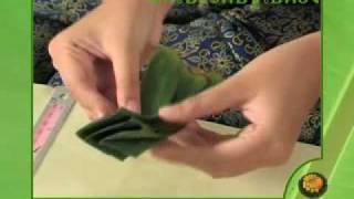 arts of banana leaf tray