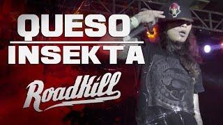 ROADKILL TOUR - QUESO - INSEKTA