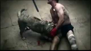 FIGHT : Man VS Dog