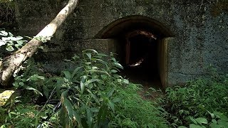 Relic Hunting - Found an Interesting Tunnel by the Creek!