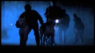 Peur Bleue (1985) Bande annonce française