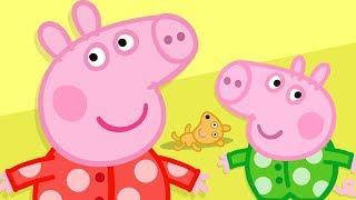 Peppa Pig en Español Episodios completos Hora de Acostarse    Dibujos Animados
