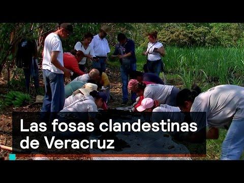 Las fosas clandestinas de Veracruz - Inseguridad - Denise Maerker 10 en punto