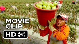 Food Chains Movie CLIP - Early Morning (2014) - Documentary HD