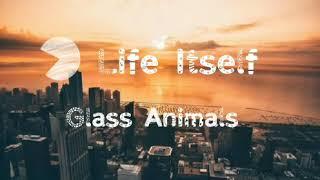 Life Itself-Glass Animals (Lyrics)