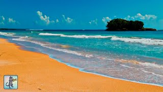 ✧ Wonderful Tropical Beach・Planet Earth Amazing Nature Scenery・Relax Music・3 HOURS・1080p HD ✧
