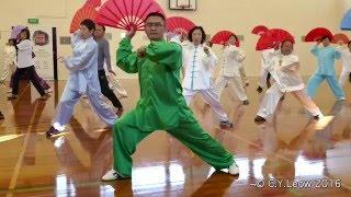 2016 WORLD TAI CHI and QIGONG DAY Wellington, New Zealand - Tai Chi Kung Fu Fan © C.Y.Leow