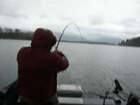 Xxx Mp4 Störfiske Kanada 3gp Sex