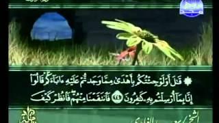 القرآن الكريم - الجزء الخامس والعشرون - تلاوة سعد الغامدي - 25