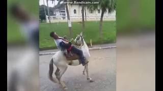 VIDEOS ENGRAÇADOS #3 / _-Dollynho-_