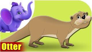 Otter - Animal Rhymes in Ultra HD (4K)