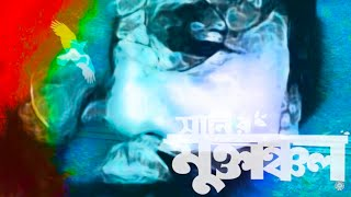 Ke Ar Bajate Pare | Sunny | Muktanchol(মুক্তাঞ্চল) | Arafat Mohsin (Official Music Video)