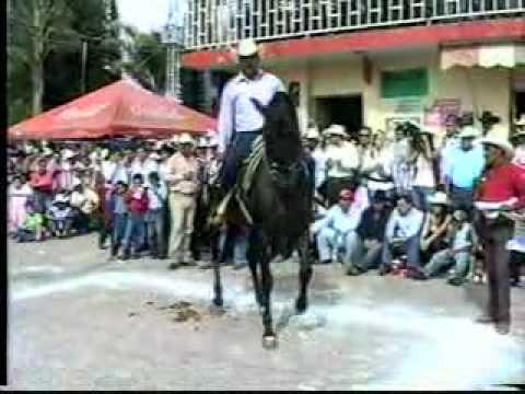 BAILE DE CABALLOS EN CUAUTLA No 3