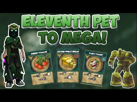 Wizard101: Training My Eleventh Pet to Mega! -MegaMikey-
