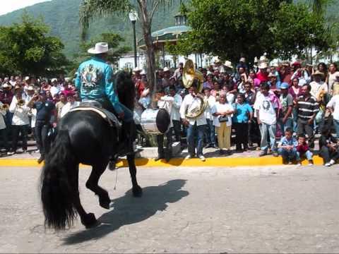 Bailando los caballos