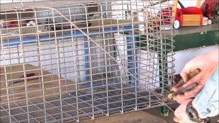 How to Make a Possum Trap or cat trap