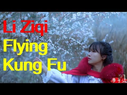 Li Ziqi interview English 采访李子柒(英文字幕)。
