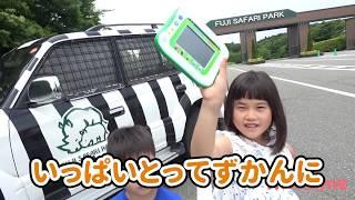 動物ゲットだぜ!!! アニア 小学館 図鑑NEOPad お出かけ サファリパーク こうくんねみちゃん ANIA Tablet Zoo