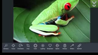 Pho.to Lab - Get a fun photo editor for iOS - Download Video Previews